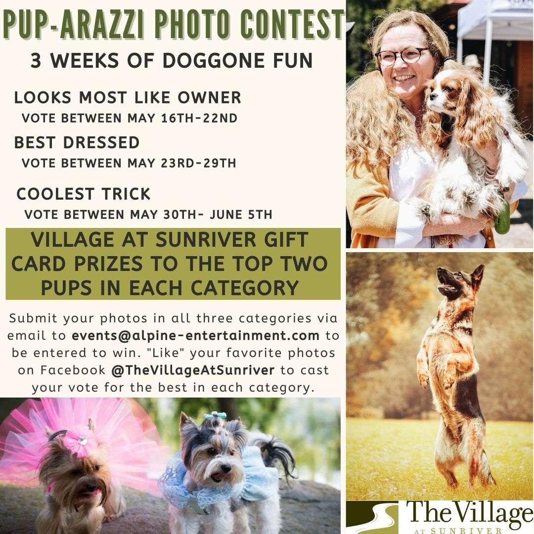 Pup-arrazi Photo Contest